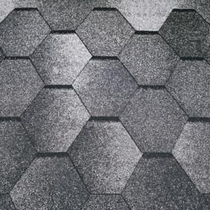 Mozaik_alpiiski_slanets