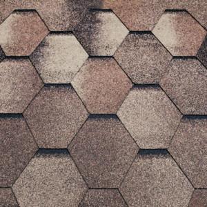 Mozaik_kedr